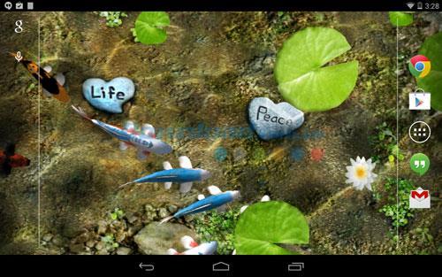 Android1.9用の鯉無料ライブ壁紙-Android上で無料の鯉魚ライブ壁紙
