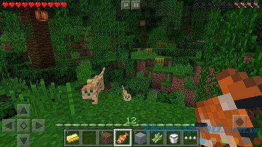 Minecraft für iOS 1.16.200 - Spiel der magischen quadratischen Blöcke auf iPhone / iPad