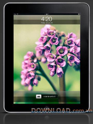 Galerie de fonds d'écran HD pour iPad - Galerie de fonds d'écran HD pour iPad