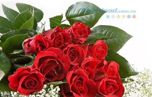Sinnvolle Geschenke am Valentinstag