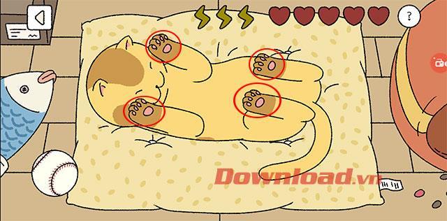 Cara memelihara kucing ketika bermain permainan Adorable Home