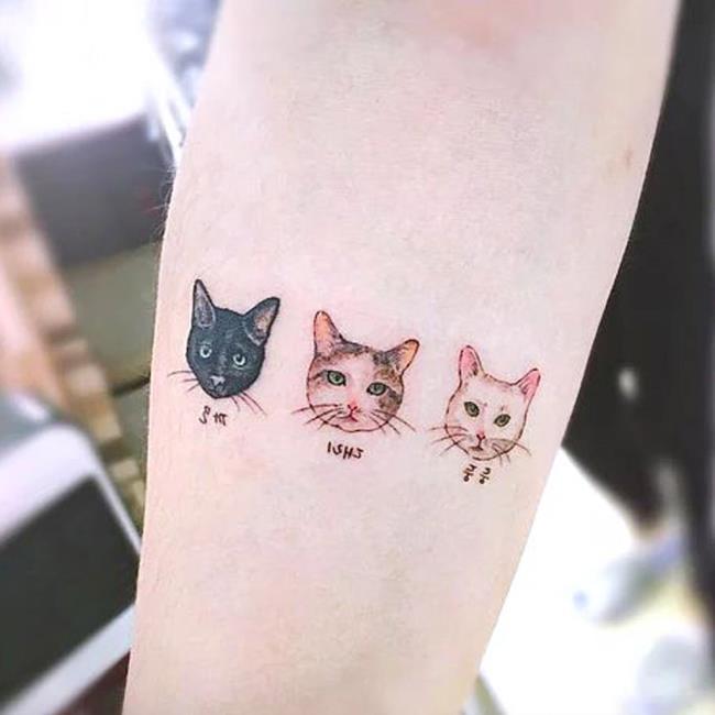 Koleksi tatu kucing comel yang sangat menarik
