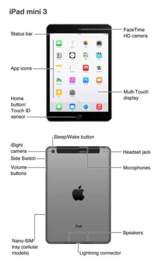 Apple secara tidak sengaja mengekspos iPad sebelum waktu G.