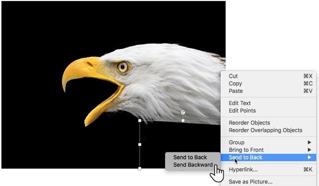 Cara membuat imej telus dalam Microsoft PowerPoint