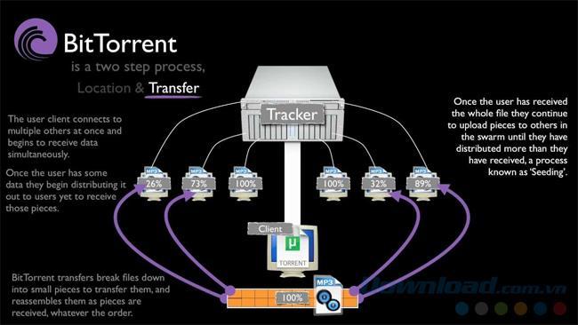 ما هو السيل؟ ما هو ملف التورنت؟ كيف تستخدم ملف التورنت؟ كيف تقرأ ملفات Torrent؟