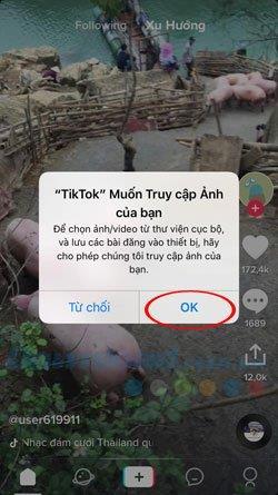 كيفية استخدام مقاطع فيديو Tik Tok كخلفية للهاتف