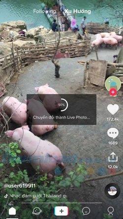 نحوه استفاده از فیلمهای Tik Tok به عنوان تصویر زمینه تلفن