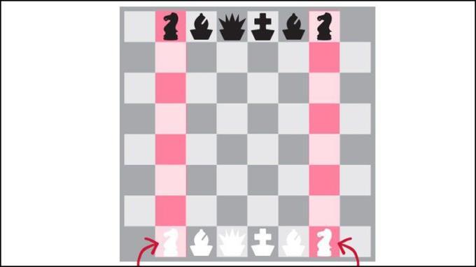 Arahan catur asas dan sederhana untuk pemula